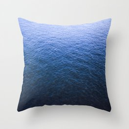 Blue Elbe Throw Pillow