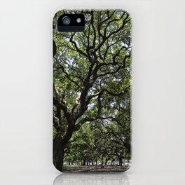 White Point Gardens iPhone Case