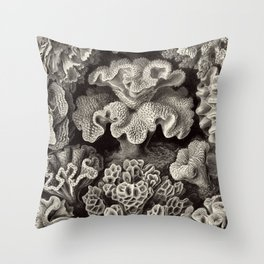 Ernst Haeckel - Hexacoralla Throw Pillow