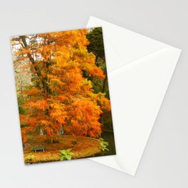 Willow in Autumn colors Stationery Cards