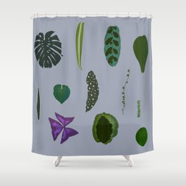 A non-scientific botanical investigation of the indoor plant. Shower Curtain