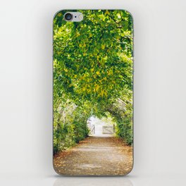 in green summer light iPhone Skin