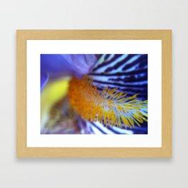 *Untitled2 Framed Art Print