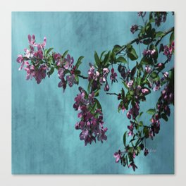 Pink Over Turquoise by CheyAnne Sexton Canvas Print