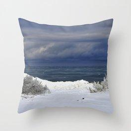 Winter Beach Shrubs Throw Pillow