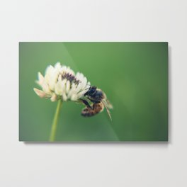 new friend Metal Print