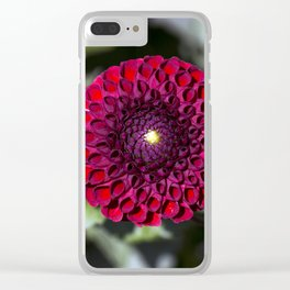 Dahlia In The Garden / 32 Clear iPhone Case
