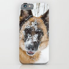 Dog in the Snow iPhone 6s Slim Case