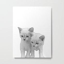 two kittens Metal Print
