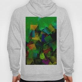 Colorandblack series 606 Hoody