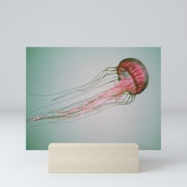 Jellyfish Mini Art Print