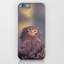 Close Up Pygmy Marmoset Monkey In A Tree iPhone Case