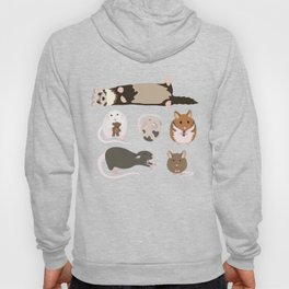 small pets Hoody