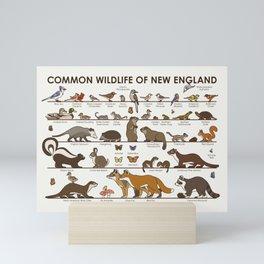 Common Wildlife of New England Mini Art Print