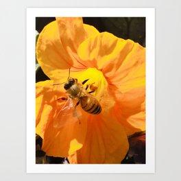 Pollination #1 Art Print