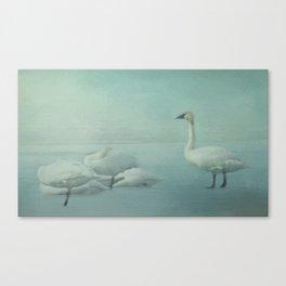 Swans on Frozen Lake Canvas Print
