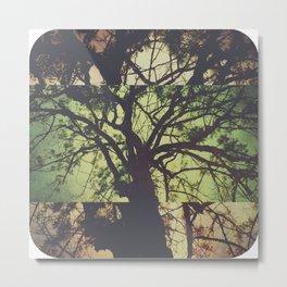 Ideolotrees Metal Print