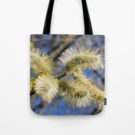 WILLOW CATKINS  Tote Bag