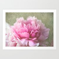 peony Art Prints featuring Peony by LoRo  Art & Pictures