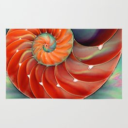 Nautilus Shell - Nature's Perfection by Sharon Cummings Rug