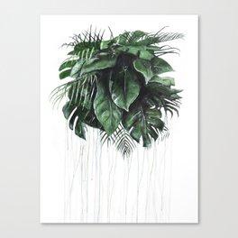 Tonic House Leaves Canvas Print