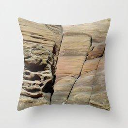 Comunidad de caracoles Throw Pillow