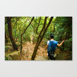 Forest Hiker Canvas Print
