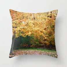 Beautiful Fall Trees Throw Pillow