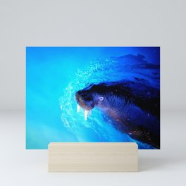 Sea Lion Cutting Through the Water Mini Art Print
