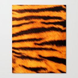 Tiger Print Canvas Print