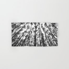 landscape photography  - forest,  black and white trees Hand & Bath Towel