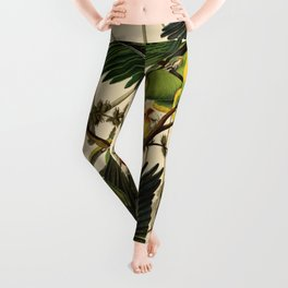 Carolina Parrot Leggings