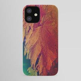 colours of autumn iPhone Case