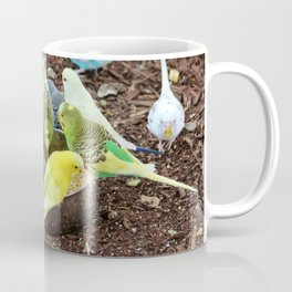Budgie Dive-In Coffee Mug
