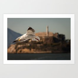 Alcatraz Freedom Art Print