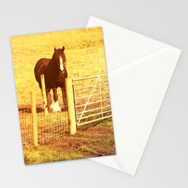 Vintage Horses Stationery Cards