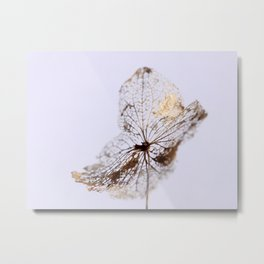 Delicate  - JUSTART © Metal Print
