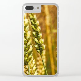 rye ears Clear iPhone Case