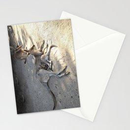Kangaroo and Joeys Stationery Cards