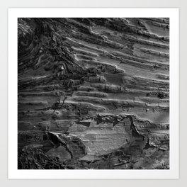 Silver Birch Bark by Teresa Thompson Art Print