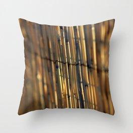 Bamboo Fence Throw Pillow