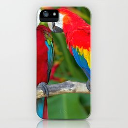 Two Splendid Spectacular Colorful Ara Parrots Flirting Close Up Ultra HD iPhone Case