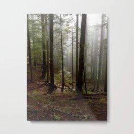 Chosen Sapling Metal Print