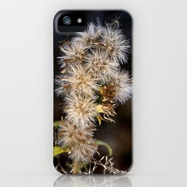 MacroFlower iPhone Case