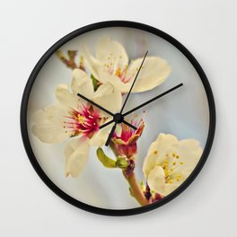 Almond Blossoms in the Wind Wall Clock