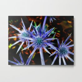 Stars on Earth Metal Print