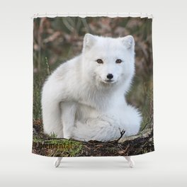 Polar Fox by Anne Elisabeth Shower Curtain