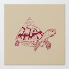 Pyratoise Canvas Print
