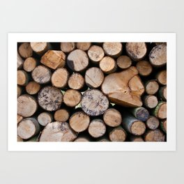 Pine wood logs Art Print