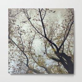 Tree of Birds Metal Print